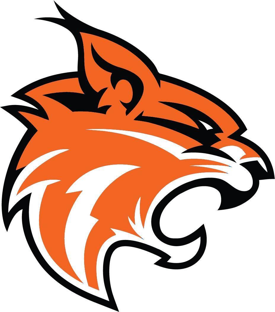 MVHS Wildcats