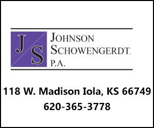 Johnson PA 300x250
